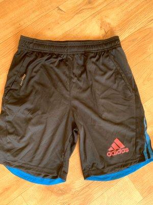 Adidas Short de sport multicolore
