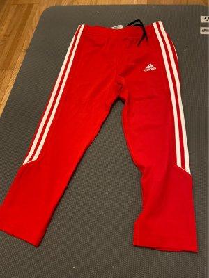 Adidas Sport Shorts white-red polyamide