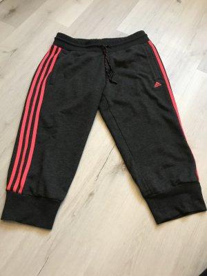 Adidas Pantalon de sport gris anthracite rouge framboise
