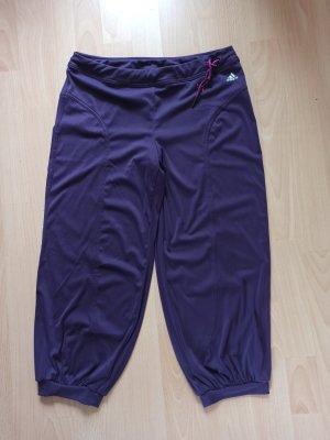 Sporthose von Adidas in Gr. 38