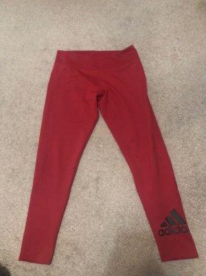 Adidas Trackies raspberry-red