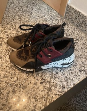 Steve Madden Lace-Up Sneaker multicolored