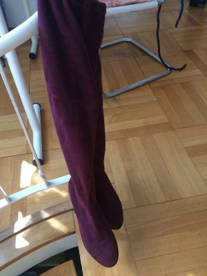 Steve Madden Buty nad kolano brązowo-fioletowy Tkanina z mieszanych włókien