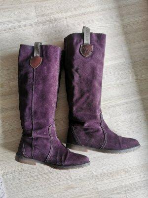 Tommy Hilfiger Bottine d'hiver violet-brun pourpre