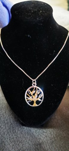 Catena d'argento argento-oro