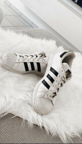 Adidas superstar Sznurowane trampki biały