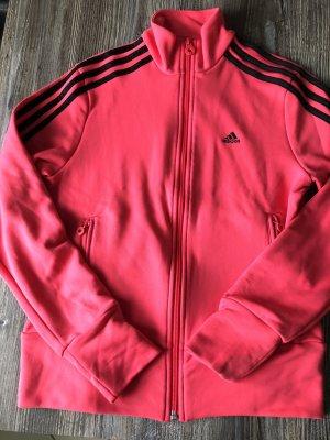 Adidas Chaqueta deportiva rojo frambuesa