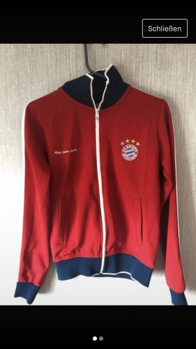 FC Bayern München College Jacket red