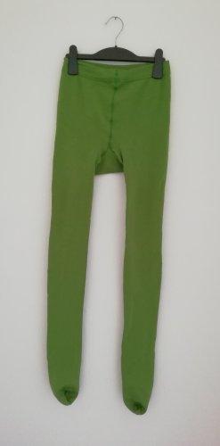 Leggings verde