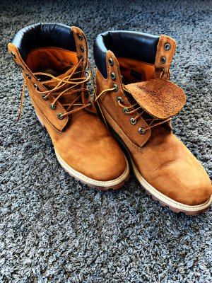 Timberland Low boot chameau