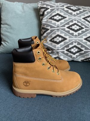Timberland Botines multicolor