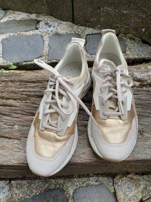 Timberland Sneakers in verschiedenen Materialien