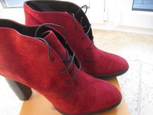 Tod´s Ankle Boots Steifeletten Gr. 40 bordeaux