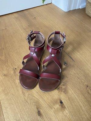 American Eagle Outfitters Sandalo romano marrone scuro-marrone-rosso