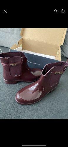 Tommy Hilfiger boots Damen