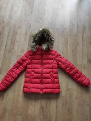 Tommy Hilfiger Veste d'hiver rouge