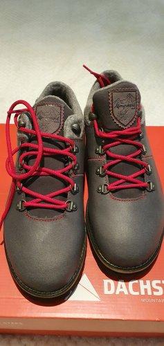 Dachstein Lace Shoes grey-dark grey