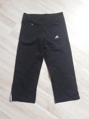 Trainigshose Adidas