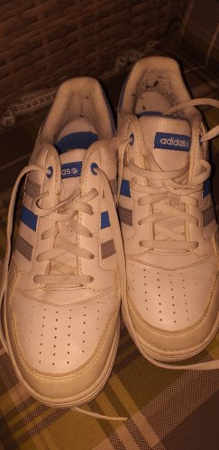 Adidas Chaussures à lacets blanc