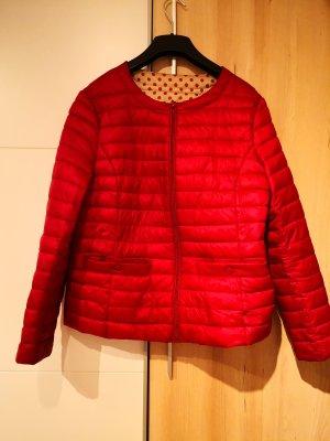 Between-Seasons Jacket dark red