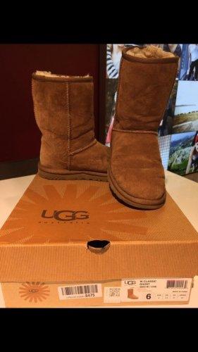 Ugg Boots -Classic Short