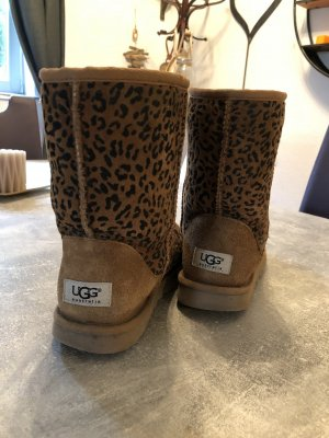 UGG Australia Ankle Boots multicolored