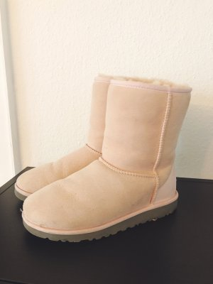 UGGs in Rosa