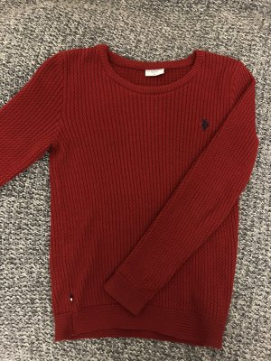US Polo Assn Pulli