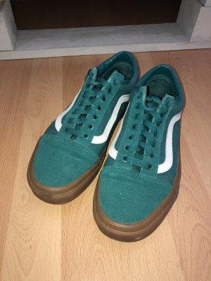 Vans Zapatos de patinador verde bosque-azul cadete
