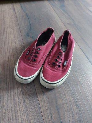 Vans Zapatos de patinador rojo oscuro-burdeos