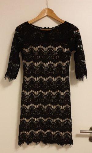 Wallis Kleid S 36 Spitze Spitzenkleid *neu*