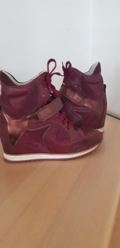 Elena Lachi Wedge Sneaker bordeaux-blackberry-red