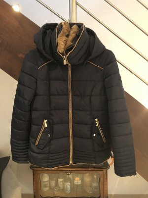 Pimkie Winter Jacket dark blue-brown