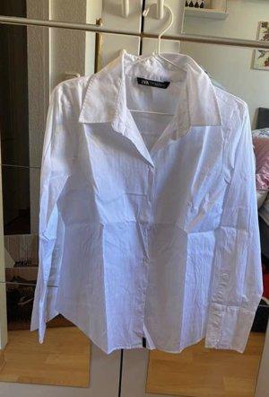 Zara Buisness Basic Bluse Hemd