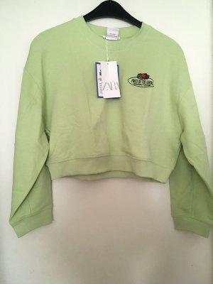 Zara fruit of the loom sweater gr M
