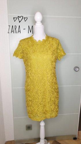 Zara Kleid M gelb Spitze 3D Kragen Lace