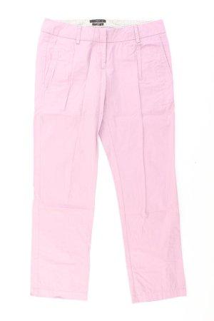 Zero Hose pink Größe 34