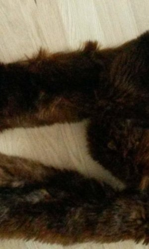 Schal Faux-fur, Zara, braun, neu