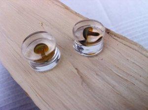 14mm Plugs transparent