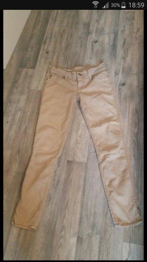 1921 Pantalón de tubo beige