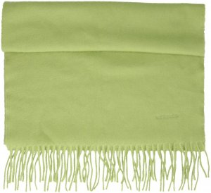Hermès Fringed Scarf green cashmere