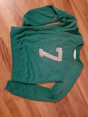 Abercrombie& Fitch Pullover