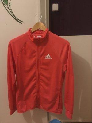 Adidas Giacca sport salmone