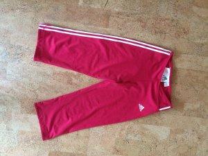 Adidas 3/4 leggings/ tights / Sporthose