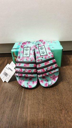 Adidas Adilette 37 AriZona Iced Tea Pack Pantolette Green Tea Türkis/Pink/Schwarz