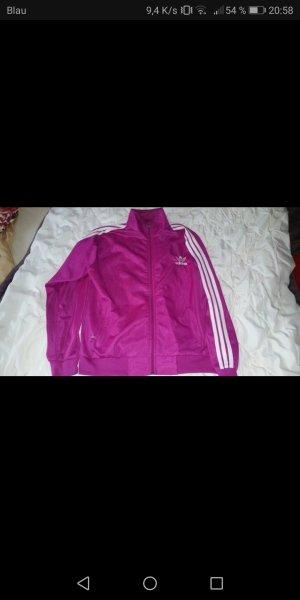 Adidas Anzug Gr. L/XL