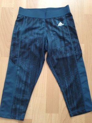 Adidas Caprihose petrol-blau