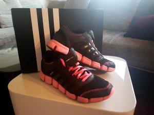 Adidas Originals Sneaker multicolore