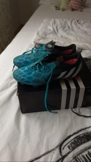 Adidas Sneakers blauw