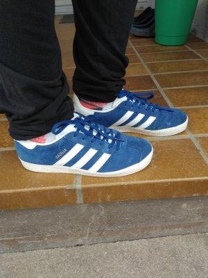 Adidas Basket à lacet blanc-bleu